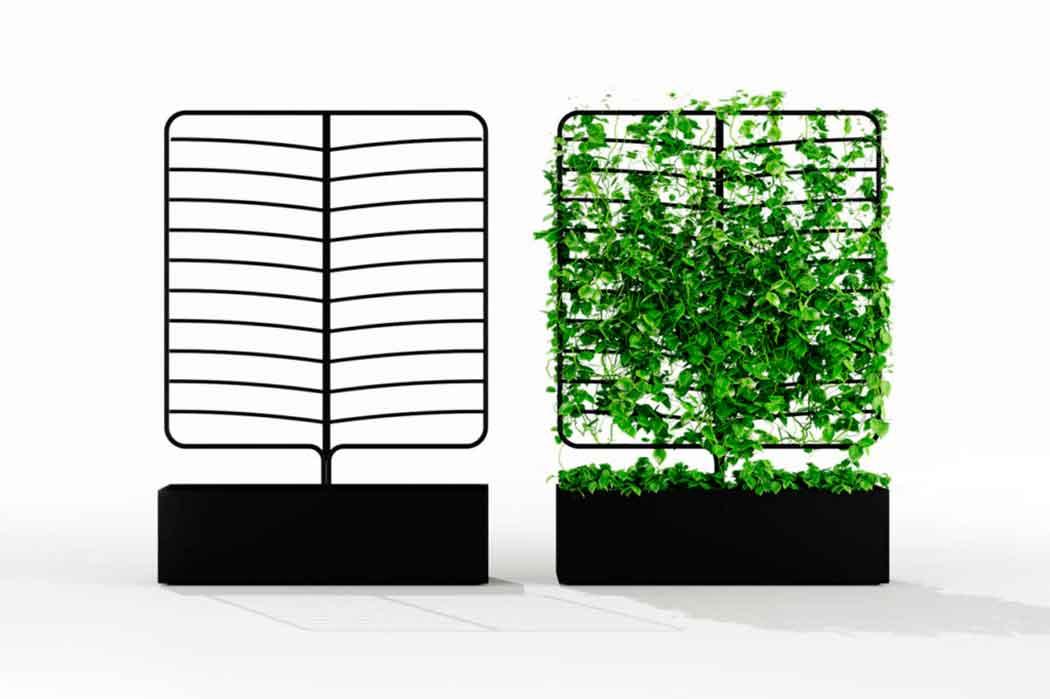 Натуральные зеленные перегородки