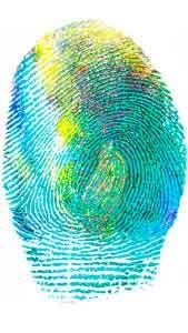 Информация, скрытая в ваших отпечатках пальцев.