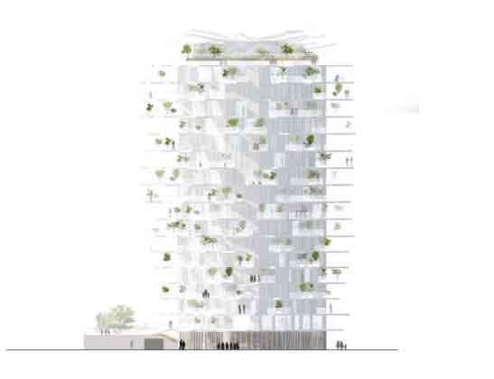 L'Arbre Blanc план башни
