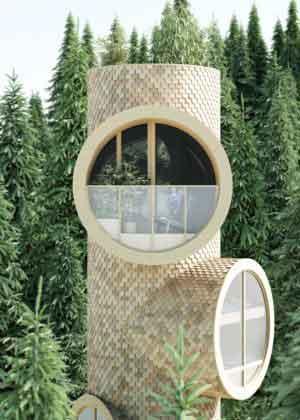 модульный дом Bert